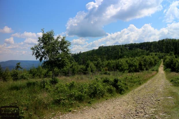 Ścieżka z Magurki na Czuple 933m npm- cel naszej wędrówki, panoramiczne widoki